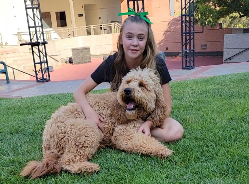 Lydia Ricks to adopt Quincey the dog